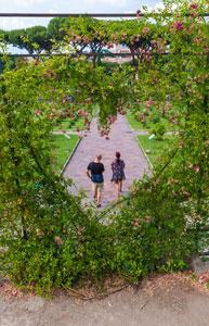 Visitatori visti dall'alto attraverso un particolare di rose rampicanti dispostea forma di cuore