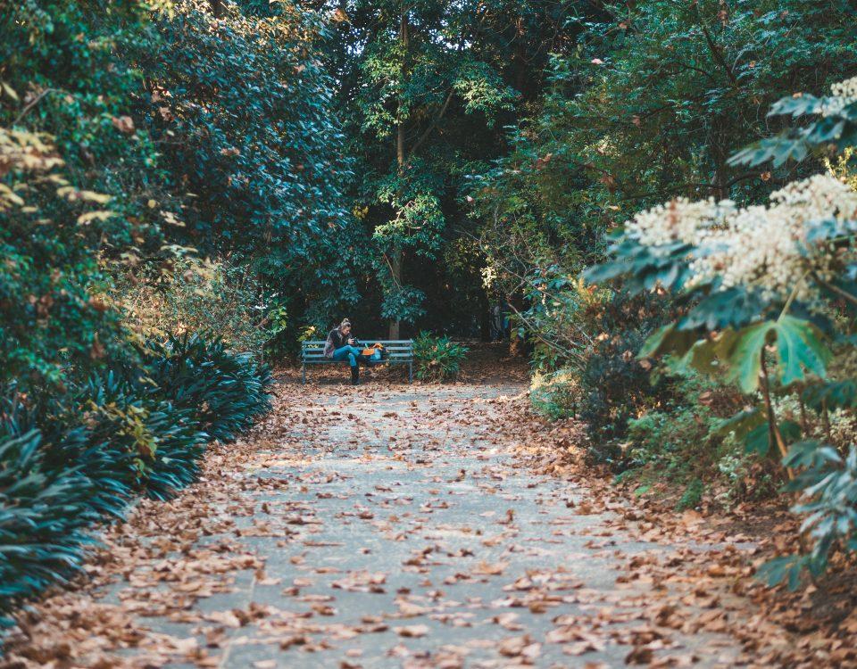 giardino-botanico-roma